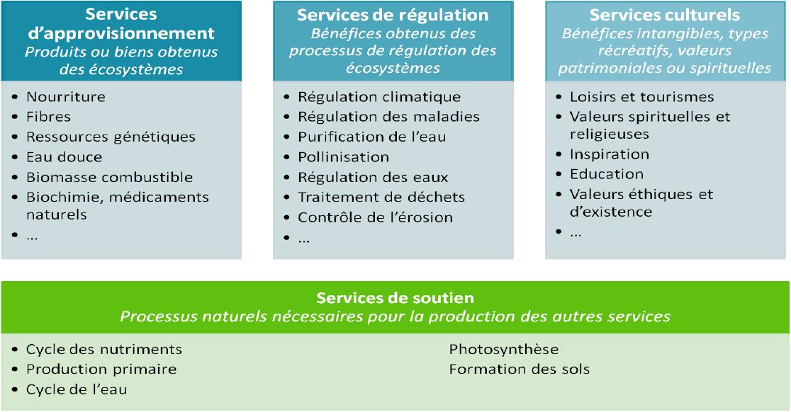 Services écosystemiques